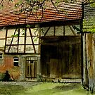 The old barn by Marie Luise  Strohmenger