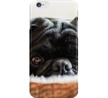 Cozy Pug iPhone Case/Skin