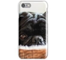 Cozy Pug iPhone Case/Skin