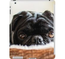 Cozy Pug iPad Case/Skin