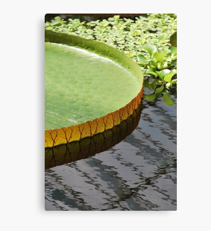 my pad... Canvas Print