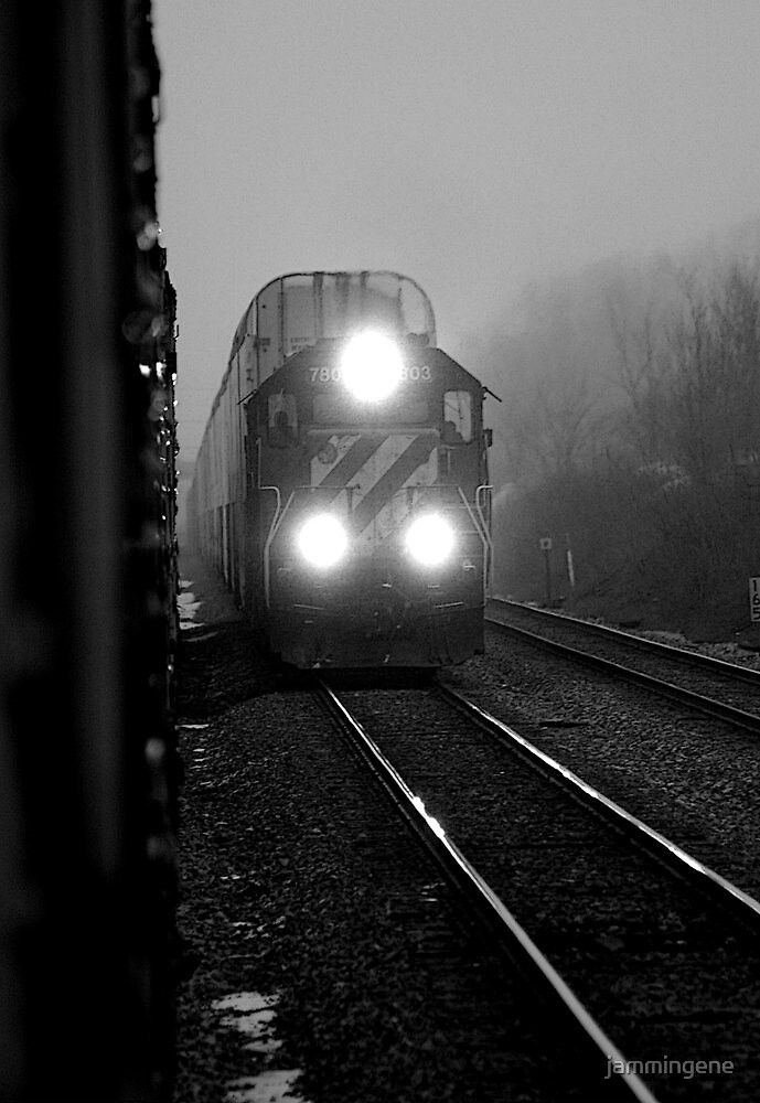 Train passing through the fog on a winter evening by jammingene