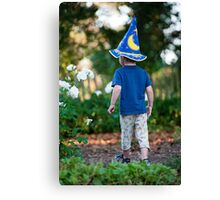 Young wizard Canvas Print