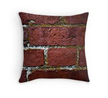 brick wall decay Throw Pillow