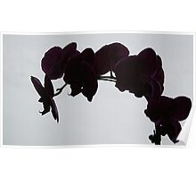 """""""Orchid Shadow"""" Poster"""