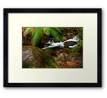 Cement Creek #3 Framed Print