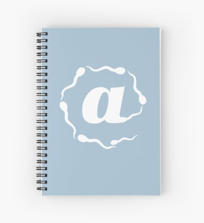 AT the beginning of the Internet Spiral Notebook