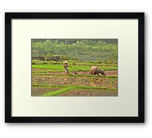 chinese farmer ploughing his field with one arm Framed Print