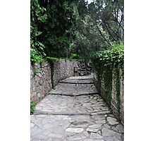Pathway of the Summer Palace Photographic Print