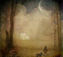 { wood cottage } by dawne polis