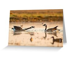 Goose Disagreement Greeting Card