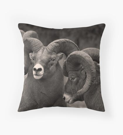 Rebel Rams - Kootenay National Park Throw Pillow
