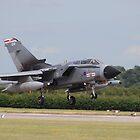 Tornado GR4 41 Sqn  by Rees Adams