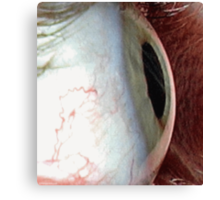 Look Into My Eye-Beam Canvas Print