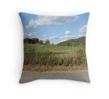 open field Throw Pillow