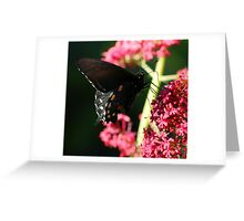 Winged Nectar Thief Greeting Card