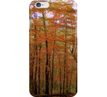 BLUE RIDGE PARKWAY - Virginia    ^ iPhone Case/Skin