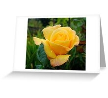 Droplets on Yellow Greeting Card