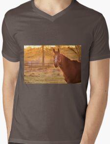 Good Morning Whiskers! Mens V-Neck T-Shirt