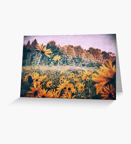 Yellow Flowers At Sunrise Greeting Card
