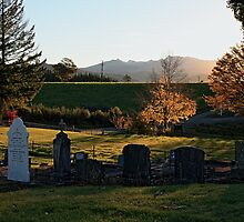 Dovedale rural cemetery by Duncan Cunningham