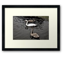 MOTHER AND BABIES  Framed Print