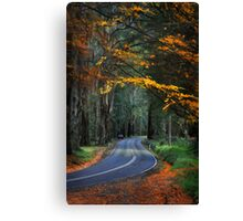 Autumn in the Dandenong Ranges Canvas Print