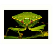 Green Stink Bug Art Print