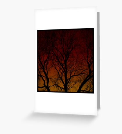 The Haunted Old Tree Greeting Card