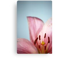 Shouting Out Canvas Print
