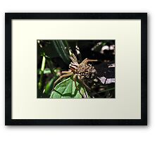 The Good Mother Framed Print