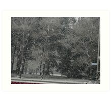 Snowstorm South NZ Art Print