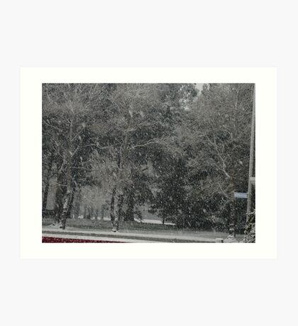 Snowstorm South NZ Art Print