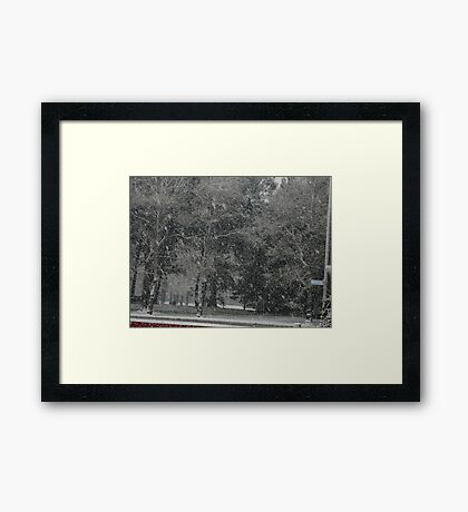 Snowstorm South NZ Framed Print