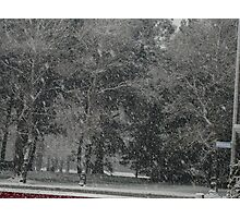Snowstorm South NZ Photographic Print