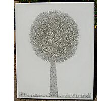 MicroDoodle Topiary Photographic Print