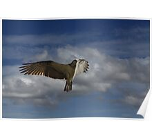 The Midair Stall Poster