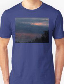 Blue on blue Unisex T-Shirt