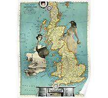 Bird Women of the British Isles Poster