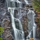 Mckenzie Falls 2 by Jeff Reid