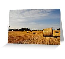 Hay Bales in Donegal Greeting Card