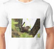 Dove Nesting Unisex T-Shirt