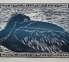 Woodcut: Pelicanus Conspicillatus by Marion Chapman