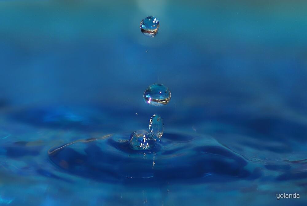 Drops in Blue by yolanda