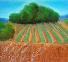 Annie's vineyard by Kostas Koutsoukanidis