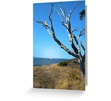 Desolate Tree Greeting Card