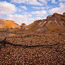Painted Desert  by bettyb