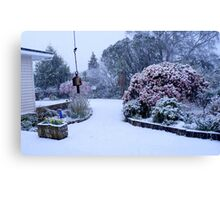 Natures white cloak - NZ - Southland Canvas Print