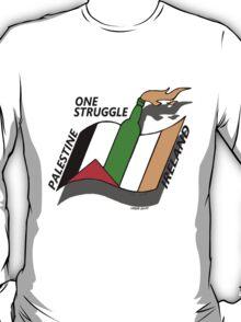 Palestine And Ireland One Struggle T-Shirt