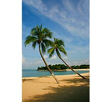 Palm Beach Photographic Print